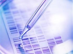 DNA亲子鉴定需要哪些样本