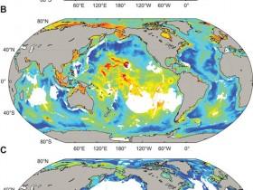 最新发现,海底深处部分微生物寿命可达1亿年以上