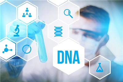 做DNA亲子鉴定需要哪些样本