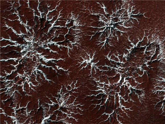 火星表面下是否有生命?